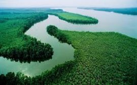 Challenges of Continued River Niger Low Flow into Nigeria